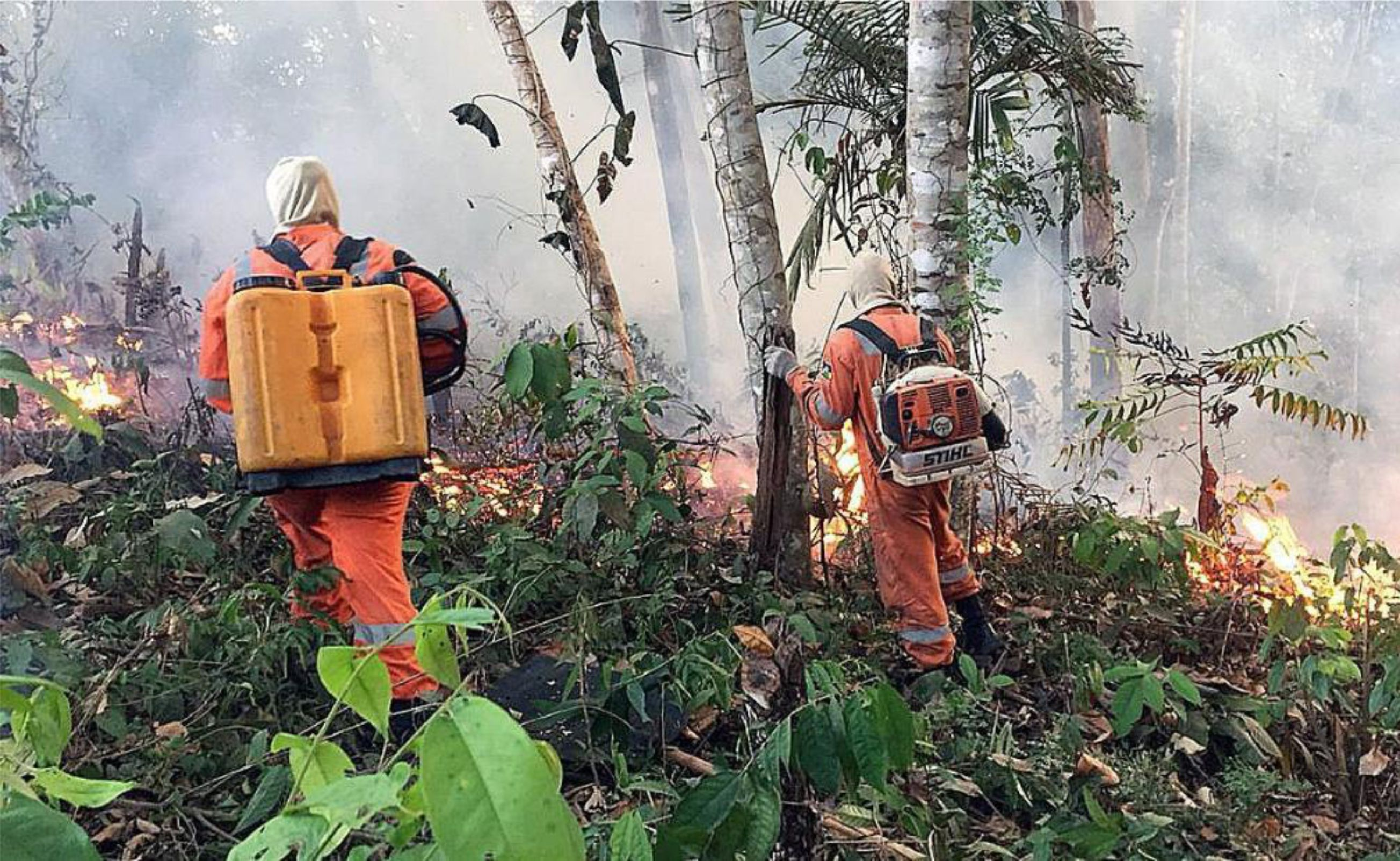 Resultado de imagen para 400 bomberos voluntarios argentinos se ofrecieron para combatir incendios en Amazonas